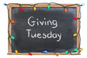 Giving Tuesday - BusyKid